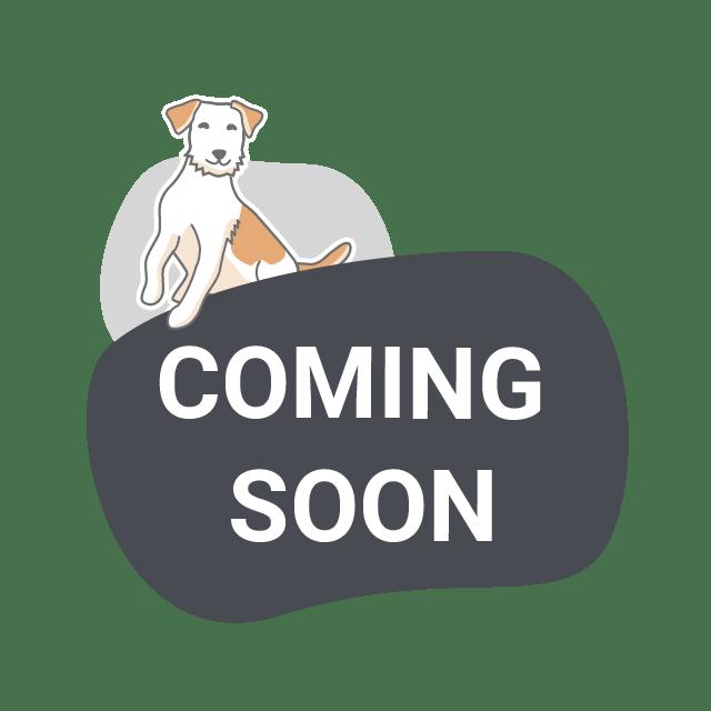 unic Platzhalter Produktbild Coming soon